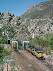 UP 802 east at Taggart, UT (thechief500) Tags: overlandroute railroads up