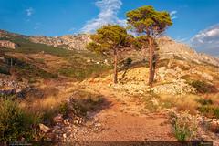 Biokovo (jirka.zapalka) Tags: summer croatia chorvatsko hrvatska landscape podgora biokovo evening pines rocks clouds bluesky