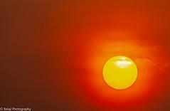 Sunrise  - Explored (Balaji Photography - 5 .5 Million+ views -) Tags: canon70d dawn lights nature sky sunrise sunny chennai chennaibeach savenature econature chennaiphotos chennaireflections chennaibirdingspots chennaibirds sun goldensun pulicautlake pulicaut bird sanctuary bayofbengal explored flickrexplored explore