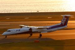 All Nippon (ANA Wings) Dash8-400 JA853A landing at NGO/RJGG (Jaws300) Tags: nagoyachubucentrairairport allnippon allnipponairways chubucentrairairport chubucentrair regional canon5d centrairairport airlines canon 5d japan nagoya chubu centrair airport air international runway rjgg ngo airplane airways taxiway isebay ise bay aircraft sky landing all nippon ana wings anawings dhc8 402 400 dhc8400 dash8400 dash dash8 bombardier ja853a goldenhour golden hour sunset setting sun set gold orange skies orangesky turboprop prop propeller regionalplane commuter commuterplane