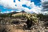 Scottsdale, Arizona 10-11-18 (benakersphoto) Tags: desert landscape landscapephotography az arizona scottsdale arizonadesert sonoran sonorandesert cloud clouds cloudy sky