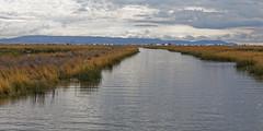 0G6A2035_DxO (Photos Vincent 2011 and beyond) Tags: pérou peru puno titicaca uros ile isla island lake lago lac bolivie lapaz