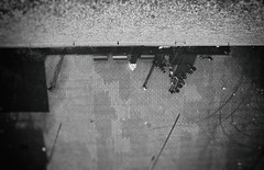 Perspektive (SurfacePics) Tags: schwarzweis blackwhite blackandwhite einfarbig monochrome bw sw menschen humans people urbanphoto perpective perspektive bürgerinitiative speicherbadessen badessen altkreiswittlage lkos osnabrückerland landkreisosnabrück norddeutschland nordwesten niedersachsen lowersaxony deutschland germany europe europa aussicht ausblick silo speicher reichstypenspeicher5000 reichstypenspeicher kornspeicher mittellandkanal kanal wasser wiehengebirge oktober 2018 surfacepics outdoor indoor amazing stunning sonyalpha77ii sonyalpha photo photography foto fotografie tumblr instagram landscape landschaft sky himmel wald forest sanierungsgebiet marinabadessen marina
