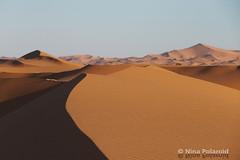 More Sahara Sand Dunes (nina.polareuth) Tags: sahara sand sanddunes ergchebbi merzouga maroc morocco