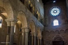 13112016-IMGP5353 (Mario Lazzarini.) Tags: chiesa cattedrale rosone colonne capitelli archi pietra historic old trani puglia italy