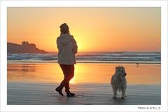 Burning Sun (BegMeil44) Tags: pointedelatorche bretagne finistère breizh bzh britanny plage strand beach sonnenuntergang sundown coucherdesoleil gripik labrit pyrenäenhütehund plomeur