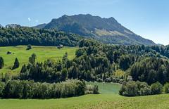 Fribourg Prealps (Bephep2010) Tags: 2018 7markiii alpha berg freiburg fribourg prealps sel24105g schweiz sommer sony switzerland teich valdecharmey voralpen wald forest mountain pond summer ⍺7iii charmey kantonfreiburg ch