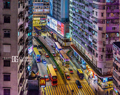 Elevated - Hong Kong (davidgutierrez.co.uk) Tags: hongkong london photography davidgutierrezphotography city art architecture nikond810 nikon urban travel color night blue photographer tokyo paris bilbao people neon uk hong kong londonphotographer skyscraper 香港 홍콩 гонконг colors colours colour beautiful cityscape davidgutierrez capital structure d810 street arts vivid vibrant design culture landmark icon iconic worldicon asia modern contemporary metropolitan metropolis tamronsp2470mmf28divcusdg2 2470mm tamron streetphotography tamronsp2470mmf28divcusd tamron2470mm pedestrian signs neonsigns shops shopping kowloon car van bus road neonlights windows highrise traffic shadow happy door
