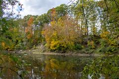 fall 2018-9 (kelsey.hurm) Tags: indiana fall whiteriver nature
