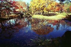 Gyokusenkan park (threepinner) Tags: mamiya universal press sekor 50mm f63 positive selfdeveloped iwamizawa gyokusenkanpark hokkaidou hokkaido northernjapan autumn lake park 玉泉館跡地公園 岩見沢 北海道 北日本