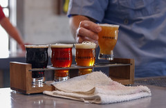 Craig sets down four different beers for a taste testing.