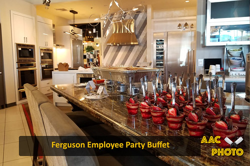 """Ferguson Employee Party • <a style=""""font-size:0.8em;"""" href=""""http://www.flickr.com/photos/159796538@N03/45670571051/"""" target=""""_blank"""">View on Flickr</a>"""