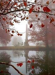 "Cincinnati - Spring Grove Cemetery & Arboretum ""Obelisk On Foggy Morning"" (David Paul Ohmer) Tags: cincinnati ohio spring grove cemetery arboretum obelisk foggy morning autumn fall geuser lake"