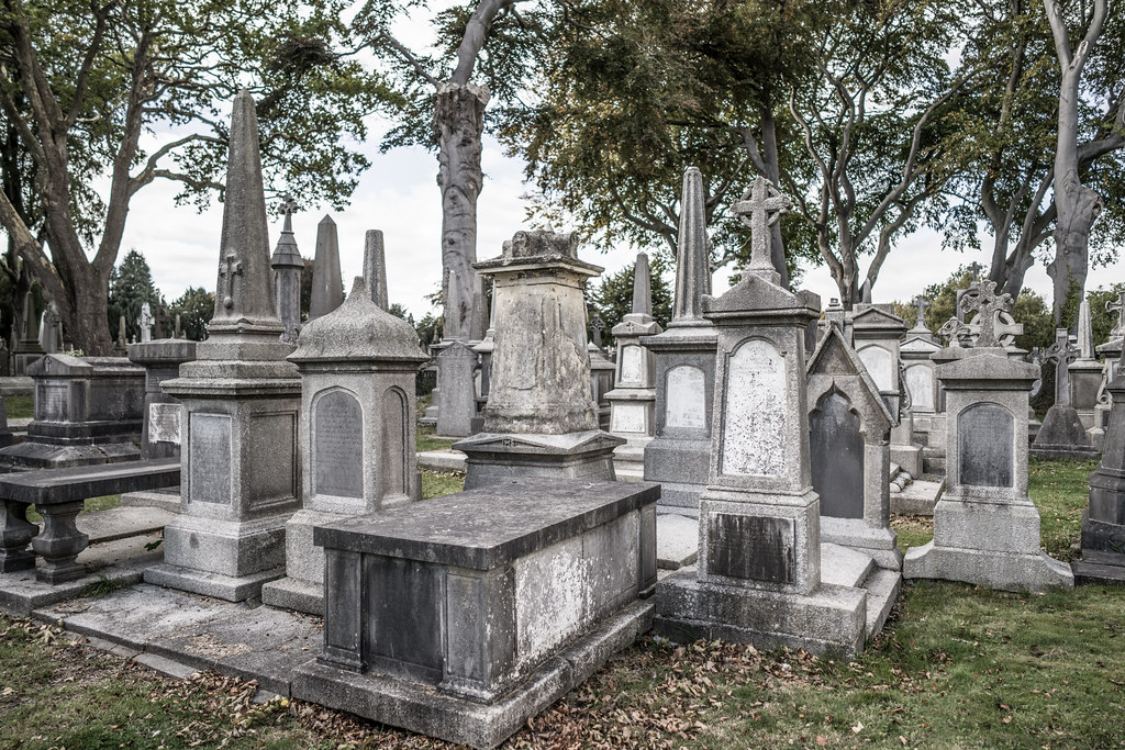 SEPTEMBER 2018 VISIT TO GLASNEVIN CEMETERY [ I USED A BATIS 25mm LENS AND I EXPERIMENTED WITH CAPTURE ONE]-144766