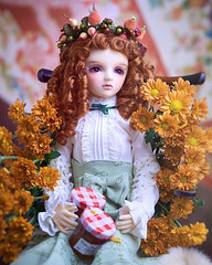 Autumn (Muri Muri (Aridea)) Tags: volks super dollfie liz oneoff ball jointed doll bjd ボークス リズ ワンオフ スーパードルフィー