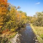 Fall around the Green Creek Corridor, Ottawa 2018 thumbnail
