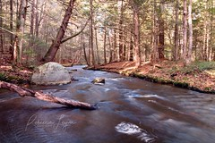 Peaceful Retreat (Rebecca Leyva) Tags: autumn fall woods forest nature relaxing relax retreat peaceful hike hiking stream river longexposure landscape