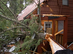 2003. Cabin damaged by a falling tree. Lake of the Woods, Oregon. (USDA Forest Service) Tags: usda usfs forestservice stateandprivateforestry foresthealthprotection region6 r6 centraloregonservicecenter centraloregoninsectanddiseaseservicecenter centraloregonforestinsectanddiseaseservicecenter lakeofthewoods hazardtree dangertree blowdown kristenchadwick foresthealth pacificnorthwestregion decay forestdisease forestpathogen tree cabin 2003 horseshoe