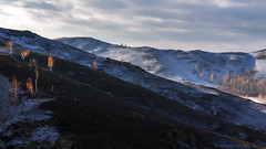 На осыпи #maksileni, #Максименко_Леонид, #Leonid_Maksimenko, #Landscapephotography, #своифото, #пейзаж, #природа, #утро, #рассвет, #дерево, #натура, #восход, #sunrise, #nature, #tree, #Landscape, #sun, #туман, #лучи, #foggy, #природа, #небо, #небоголубое, (ЛеонидМаксименко) Tags: bestofrussia uralinsta сониа6000 maksileni leonidmaksimenko natgeoru foggy nature небо природа натура дерево etonashural sun рассвет своифото sunrise natgeorussia сониальфа landscapephotography пейзаж восход sonyalpha небоголубое утро sonya6000 лучи tree landscape natgeoyourshot туман максименколеонид