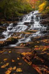 Minnehaha Falls - GA (Reid Northrup) Tags: rrs nature autumn cascades fall forest georgia landscape leaves longexposure longexposurewater minnehahafalls nikon reidnorthrup stream trees water waterfall