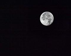 (Noisy) Harvest Moon (DeePee64) Tags: moon harvestmoon sky nightsky earlymorningshot