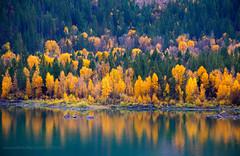 Slide Lake (scepdoll) Tags: antelopeflats fall mormonrow rain tetons wyoming aspens autumn barn cloudy cottonwood cottonwoods kelly lowerslidelake reflections