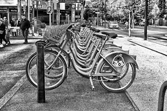 Velodi (stephaneblaisphoto) Tags: architecture bicycle rack building exterior built structure city day footpath incidental people land vehicle men mode transportation outdoors plant real sidewalk stationary street bw blackandwhite monochrome