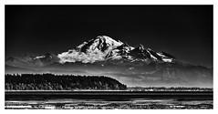 Mount Baker (jbarc in BC) Tags: mountbaker washington volcano mountain snow sea landscape bw cascades kulshan washingtonstate bc glacier