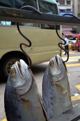Fishing in Mong Kok (Francis Johns) Tags: mongkok hongkong ricohgr