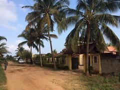Bienvenue à la maison des volontaires à Zanzibar ! (infoglobalong) Tags: hébergement maison des volontaires logement bénévoles transport local dala zanzibar tanzanie afrique