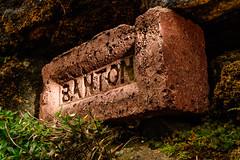 """just another brick....."" (grahamrobb888) Tags: d500 nikon nikond500 1755f18dx nikkor nikkor1755mmf18dx brick wall flash speedlight sb700 yongnuo"