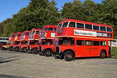 London Transport RT variations (davidvines1) Tags: red doubledecker bus londontransport rtl rtw