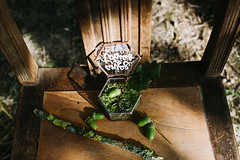 green wedding in wiesbaden (Yuliya Bahr) Tags: rings wedding detail details green moos sunlight light box oak brown forest ecowedding