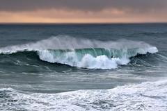 Surf at sunset. (mariya_ka) Tags: nazaré portugal nature nikon nikond810 water ocean wave surf nikkor70200 sunset birds