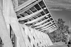 Vichy (03) (jp-03) Tags: noir blanc black white bianco nero vichy jp03 architecture palais lac