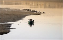 The end of a perfect day ! (Armelle85) Tags: extérieur nature lagune eau bateau oiseu cormoran soir reflet sérénité zen