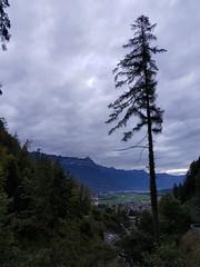 Wilderswil scenes 79 (SierraSunrise) Tags: switzerland wilderswil europe