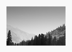 Western Sierras | A Road Trip (bnishimoto) Tags: minimal roadtrip fujifilm acros bw monochrome xpro2 18135mm landscape sky wood forest mountainside