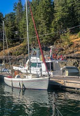20180816_0095 (Bruce McPherson) Tags: brucemcphersonphotography sailing columbia22 columbia22sailboat blueshiy blueskies desolationsound westredondaisland refugecove bc canada