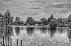 Tranquility! 😁 (LeanneHall3 :-)) Tags: blackandwhite mono bridge lake trees branches leaves sky skyscape clouds cloudsstormssunsetssunrises woodenposts reflection eastpark hull kingstonuponhull landscape canon 1300d groupenuagesetciel