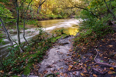 Minneopa Creek Gorge 4 - Minneopa State Park, MN (j-rye) Tags: trees water bridge leaves wood landscape river creek stream sonyalpha sonya6000 sony a6000 ilce6000 mirrorless