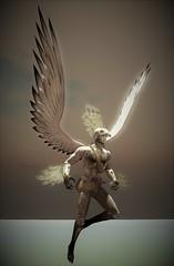 My Winged Warrior (Al Neville) Tags: mythos wings sky