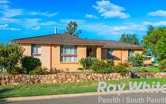 1 Boree Place, Werrington Downs NSW