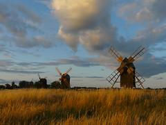 Sweden, mills on Öland (duqueıros) Tags: sweden sverige schweden öland lerkaka mühlen mills insel island duqueiros