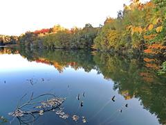 Herbst (Wunderlich, Olga) Tags: bunt herbst spiegelung rügen landschaftsaufnahme naturfoto
