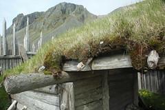 2Q8A2251 (marcella falbo) Tags: höfn iceland vikingvillage