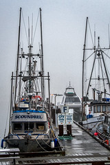 Wet and Foggy is the Forecasgt (johnscratchley) Tags: landscape fishermanswharf weather nature autumn fog rain