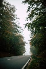 On the road again (mripp) Tags: art vintager retro old driving drive landscape landschaft road street landstrase vanlife roadtrip nikonz7 nikkor 50mm f12 bavaria germany fog foggy