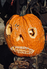 A beat up, ugly pumpkin (mrgraphic2) Tags: pumpkin watermansfarm waterman farm rural halloween fall autumn ugly face rough funny