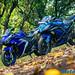 Yamaha-R3-vs-Kawasaki-Ninja-300-19